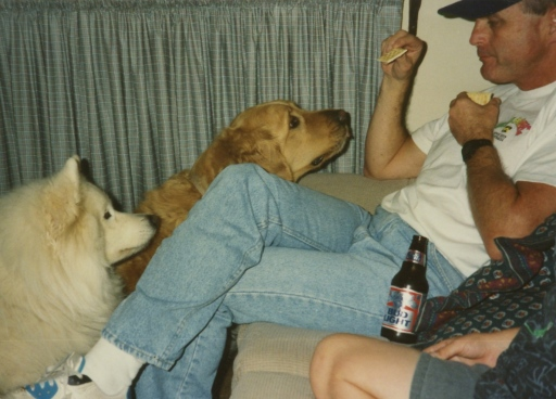 Dad wheat thins dogs