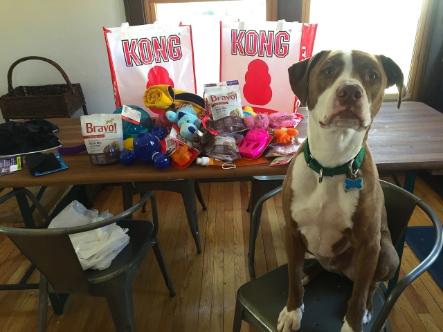 Buster Brown was bummed I didn't take him, but thrilled with the loot I came home with.